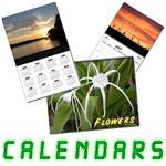 Unique Wall Calendars Here Now!